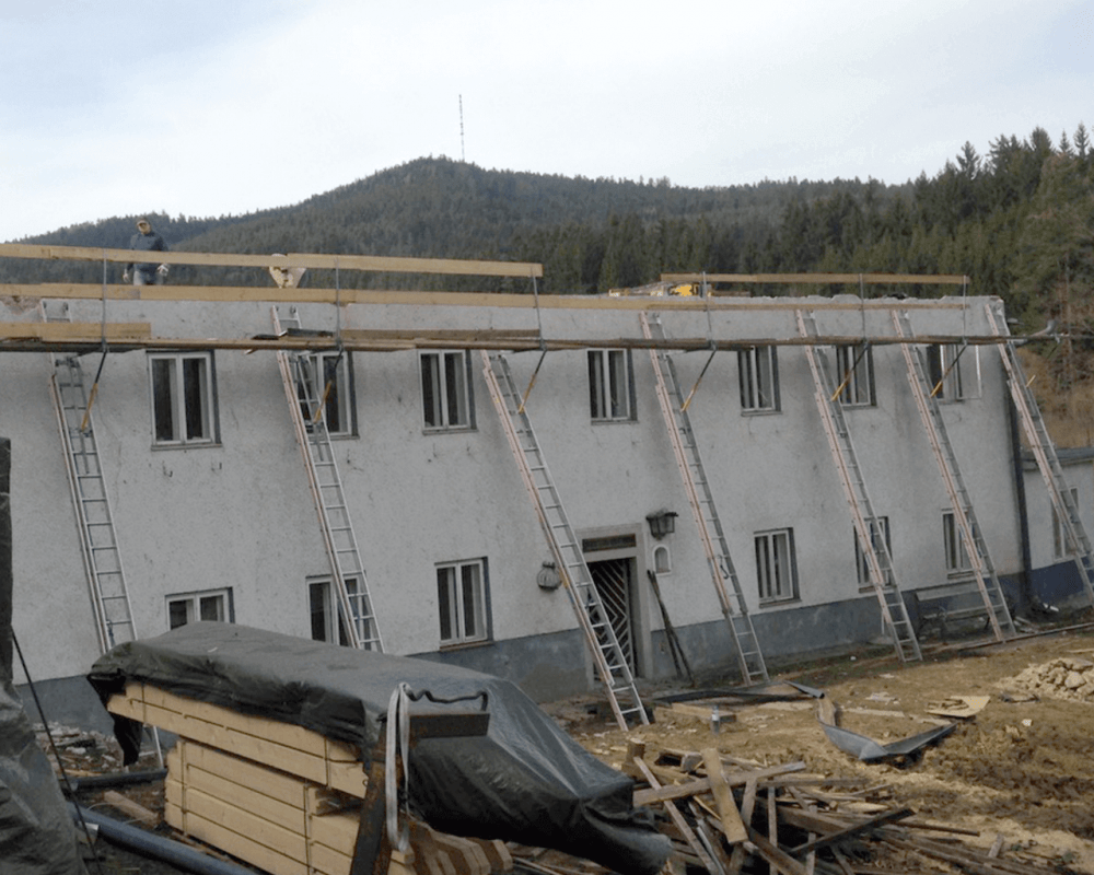 Nackerte Mühlen und Mauersegler